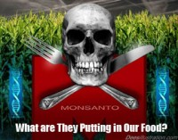"Monsanto Skull ""Double Crossed"" by David Dees"