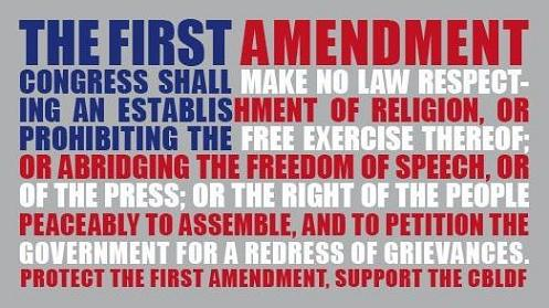 an analysis of the freedoms granted by the first amendment of the american bill of rights The bill of rights, reduced to ten amendments, down from the list of seventeen  what this american set of freedoms has in common is its enshrinement in the bill of  freedom of speech now seems as fundamental as the injunction against  freedoms—that a list of specific rights would imply that they were granted by the.