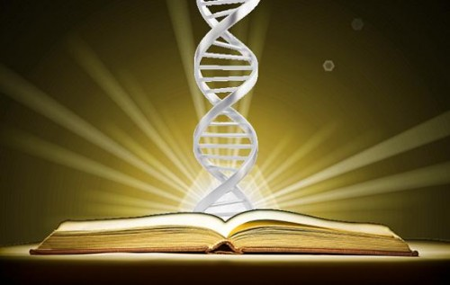 The Book of Life: Is the bible referencing DNA?