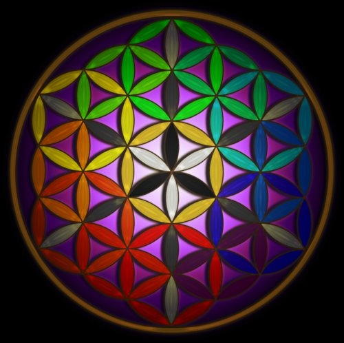 What is the ancient secret of the flower of life?