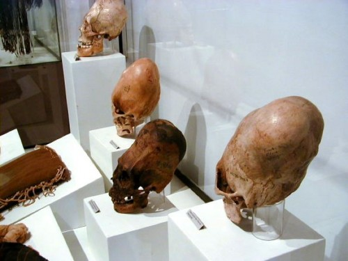 Skulls and other ancient artefacts have been displayed by Klaus Dona and his colleagues