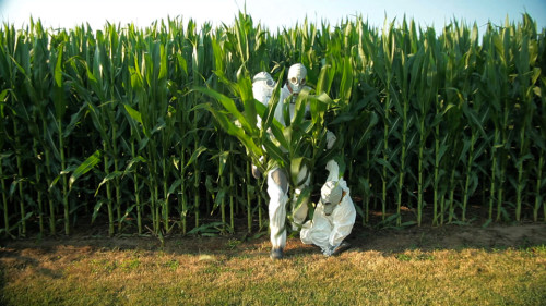 GMO Film educates about dangers of messin' with food.