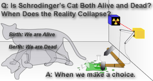Schrodingers Cat: Alive or Dead - Who Chooses?