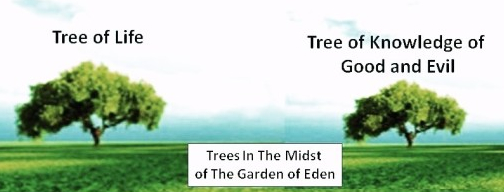 Two Trees in the Garden of Eden: One Real, the Other, a Fiction