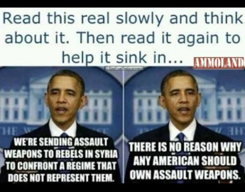 AMMOLAND: Obama and His Twin (Mini Me?) doublespeak - Arming Terrorists and Disarming Americans?