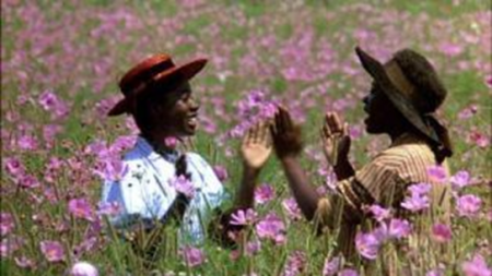 The Color Purple: Celie and Nettie