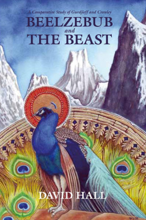 A book about the Cult of the Peacock Angel