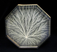 Fractal pattern emerges in acrylic sculpture by Captured Lightening.