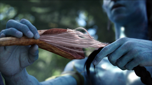 "Avatar: A ""State of Entailment."""