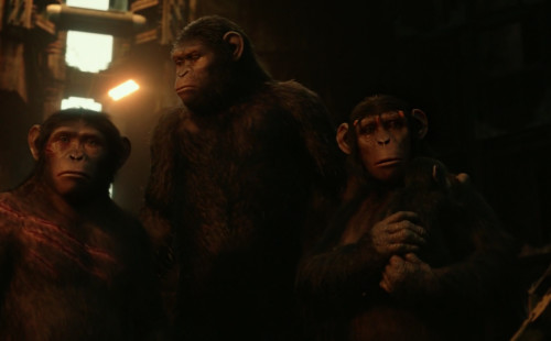 No King But Caesar? Dawn of the Planet of the Apes (2014)