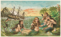 Shipwreck: Mermaids with Salvage
