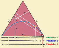 Triangle -impact of dominant-recessive relationships between alleles on mating outcomes