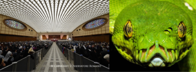 The Dark Secrets Behind the Pope's Audience Hall